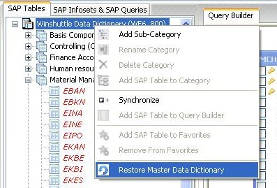 Tables and the Winshuttle Data Dictionary
