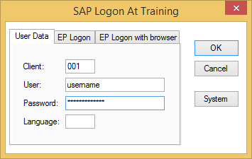 sap logon box