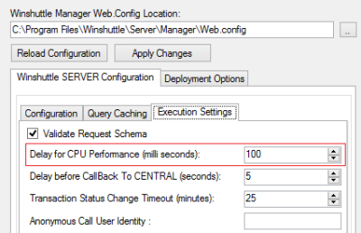 Winshuttle Server Admin Tool Guide: The Execution Settings tab